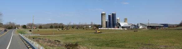 This farm always has plenty of activity.