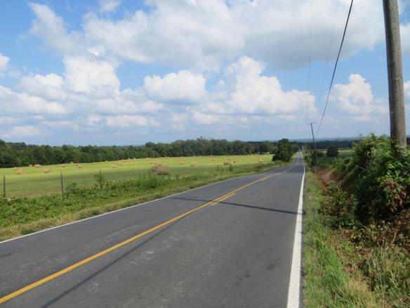 Hay bales on Elk Run Road