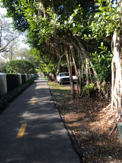 The path out of Miami