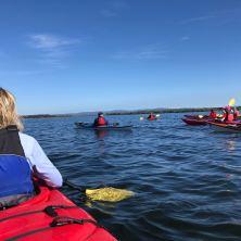 The kayak adventure